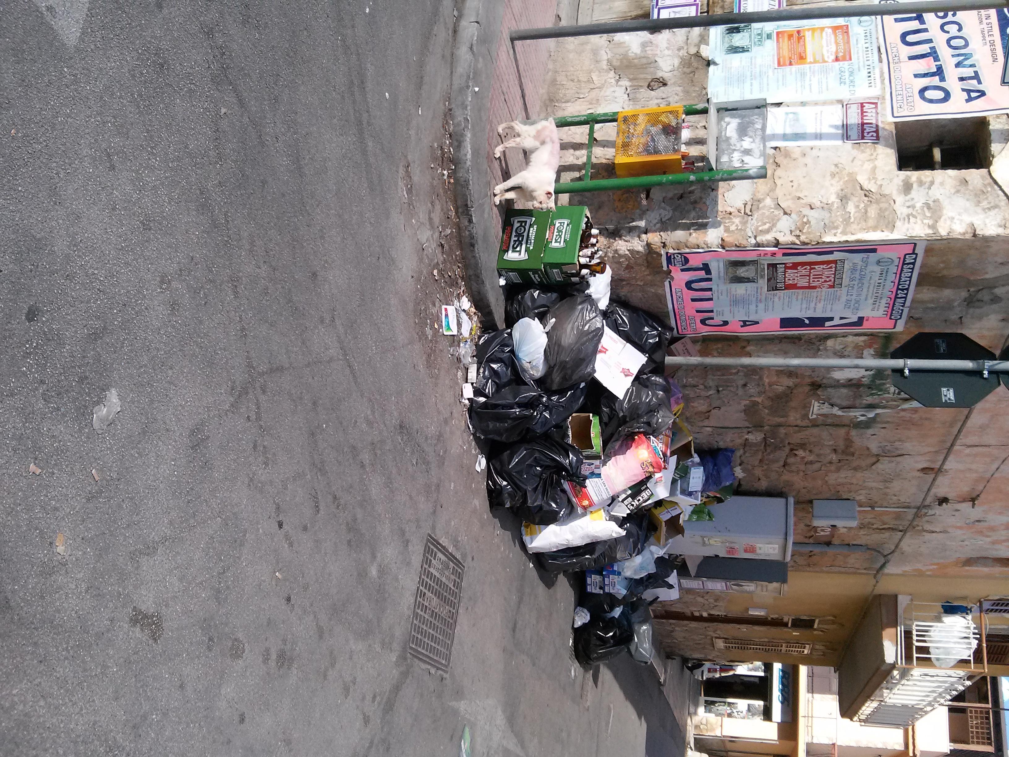 La commissione rammenta alla cittadinanza l ordinanza del for Conferimento rifiuti